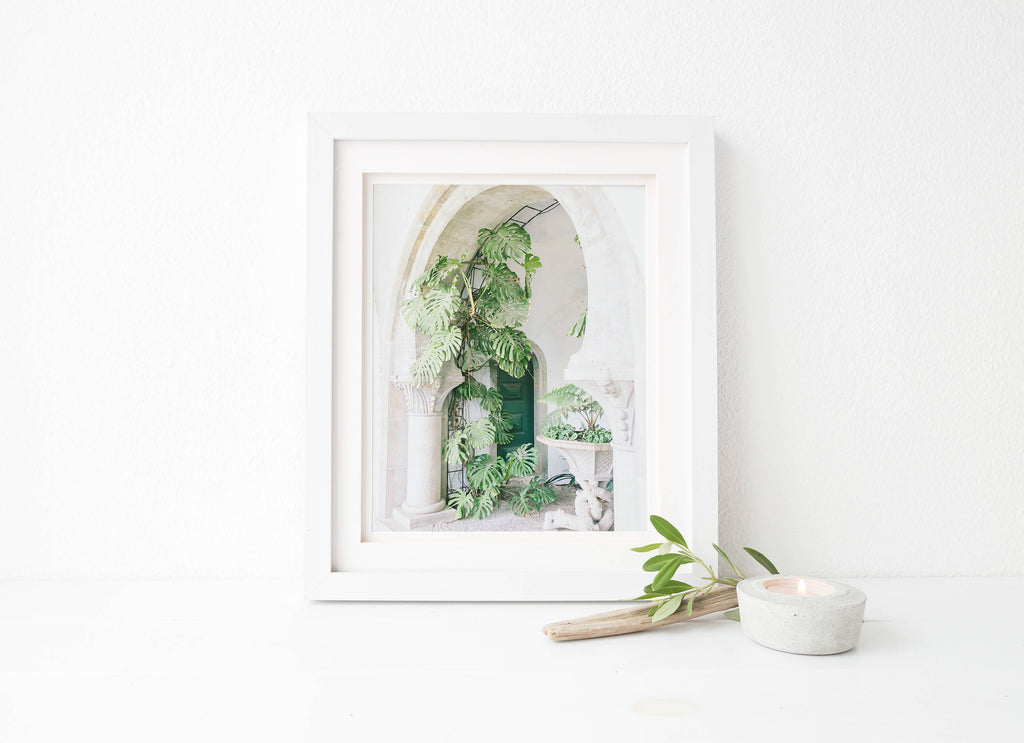 monstera leaf botanical art print