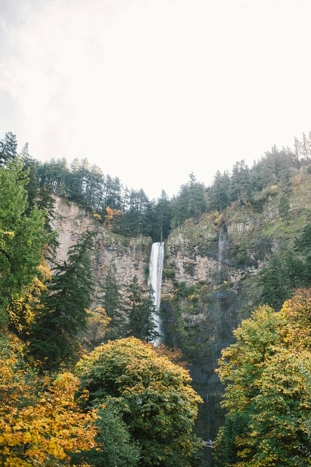 multnomah falls nature print