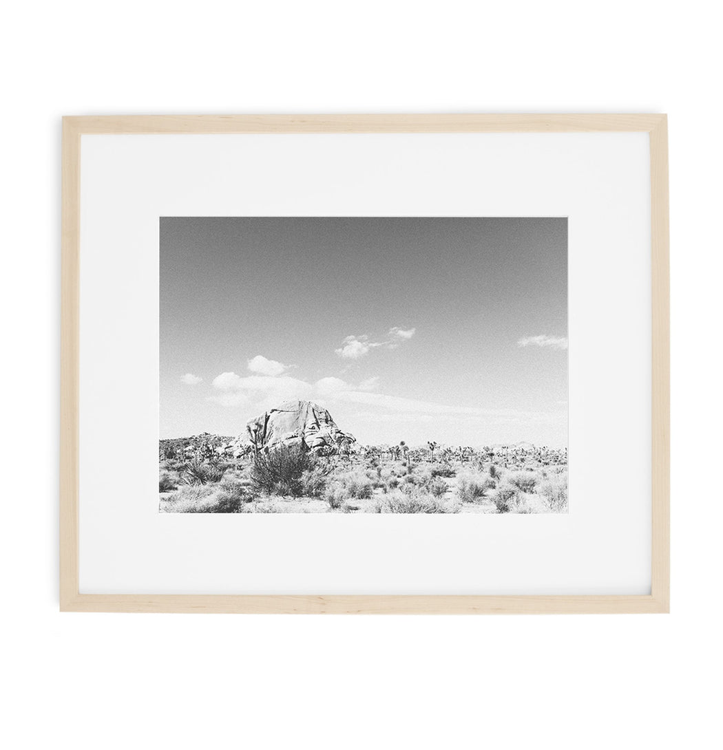 joshua tree black and white boulder print