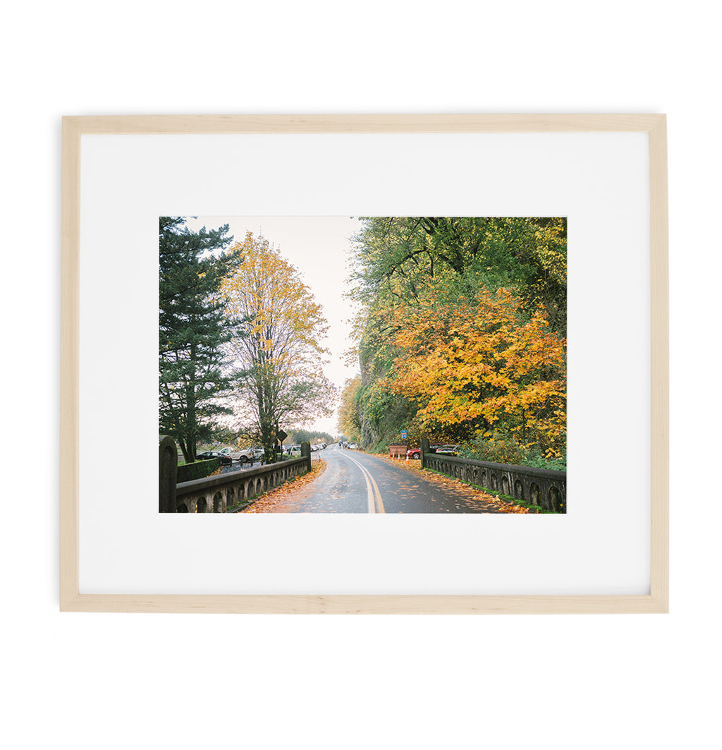 autumn leaves fall print