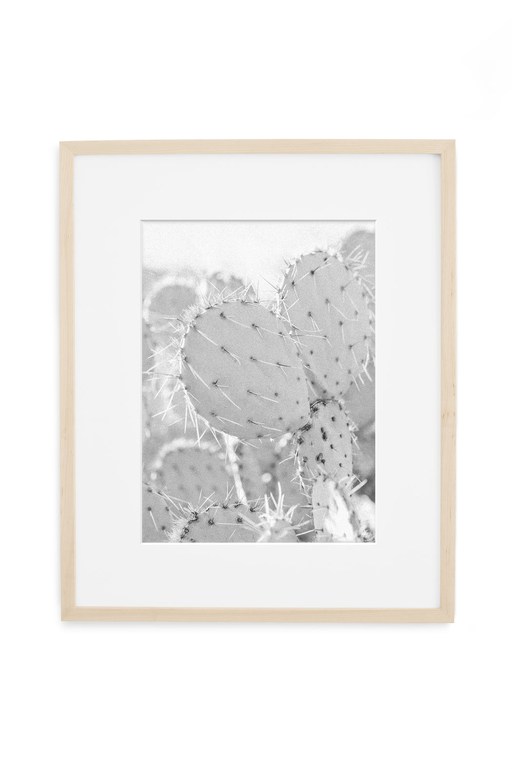black and white minimalist cactus print