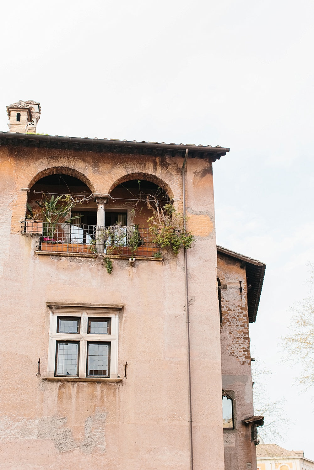 italy blush building print