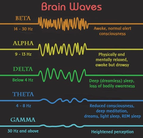 Brain Waves in Consciousness