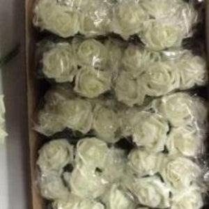 a box of ivory foam roses