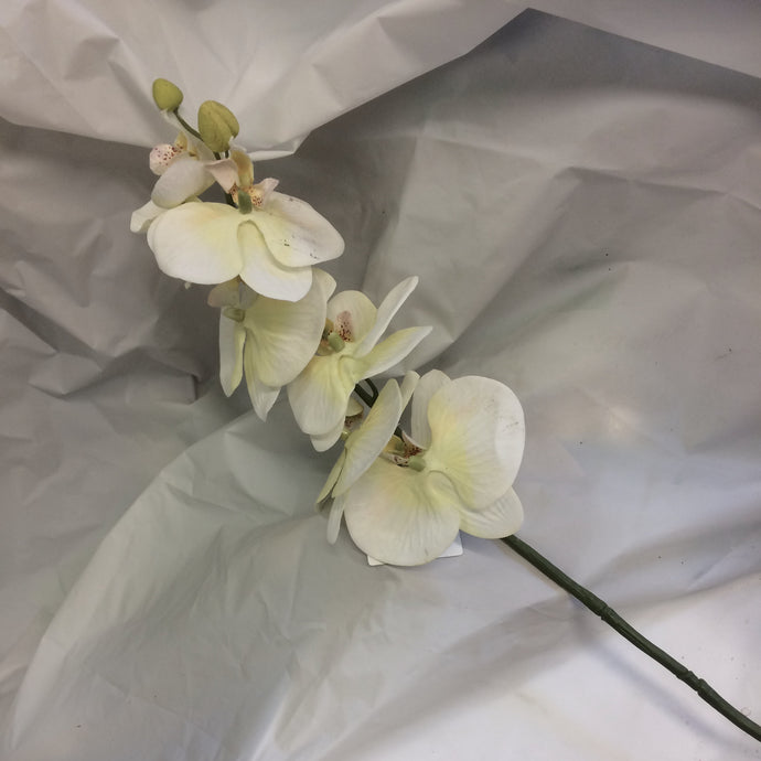 large stem of cream orchid silk flowers