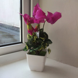 artificial cyclamen in white pot