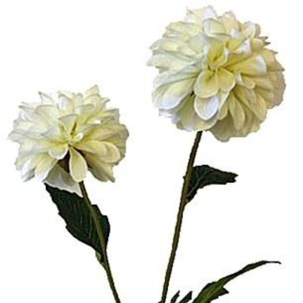 an artificial cream pompom dahlia silk flower spray