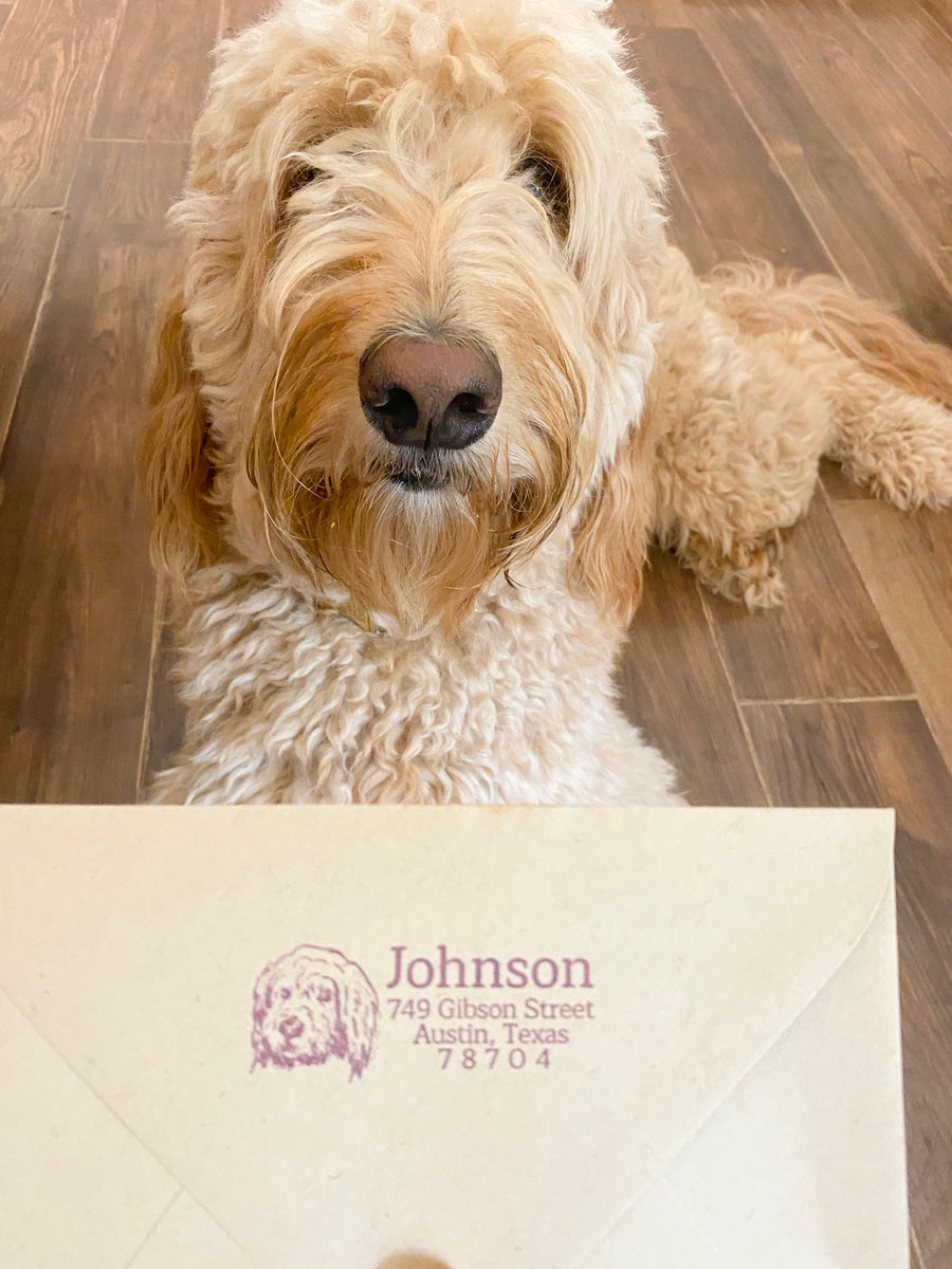 Goldendoodle Address