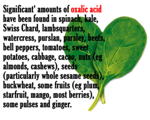The REAL Truth About Oxalic Acid in the Parrot Diet