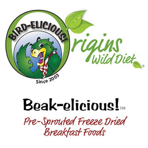 Breakfast Foods - Egg Dishes, Sprouted Pseudo-Grains, Microgreens, Edible Flowers