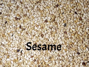 Sesame Seeds for Sprouting for Exotic Birds