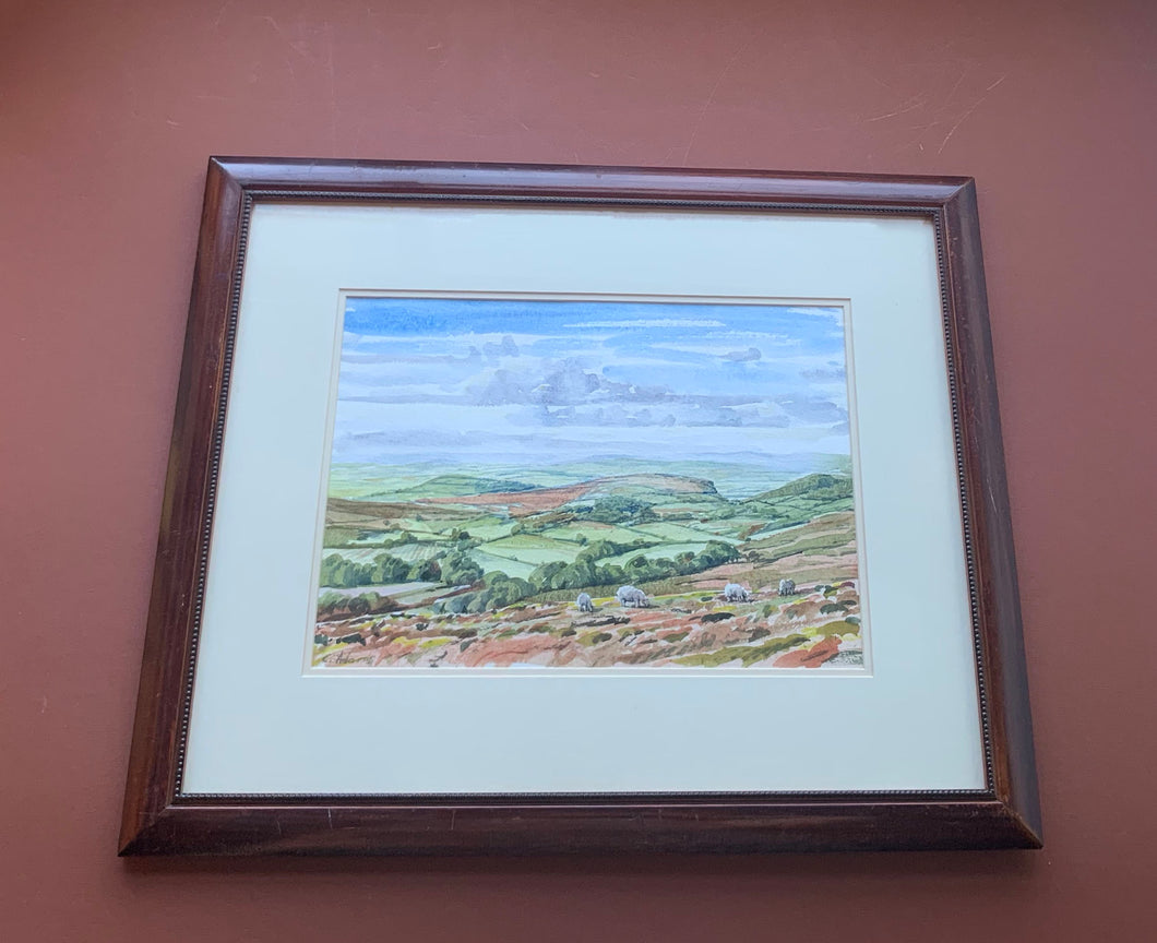 C. Adams Framed Watercolor Painting of Field with Sheep