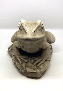 Front of Cast Stone Frog, Concrete Statue