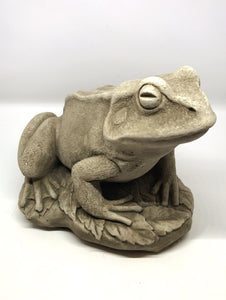 Actual color of the Cast Stone Frog, Concrete Statue