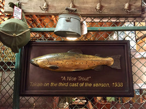 Trout Fish on Plaque, UCM Exclusive, Fishing Trophy