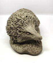 Face of Cast Stone Hedgehog, Concrete Statue