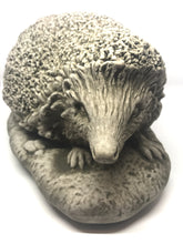 Front of Face of Cast Stone Hedgehog, Concrete Statue