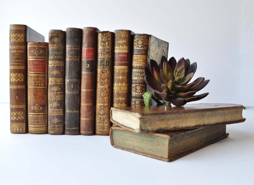 A group of vintage french leather bound books with a small stack beside it and a succulent sitting on top.