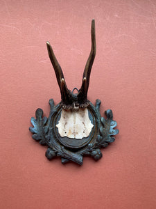 Roe Horns on Oak Leaf Plaque