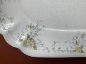 Waterloo Potteries Serving Dish with Plate and Spoon - Pattern Schonbrunn