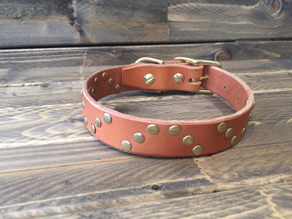 HELIX Rivet Dog Collar  1