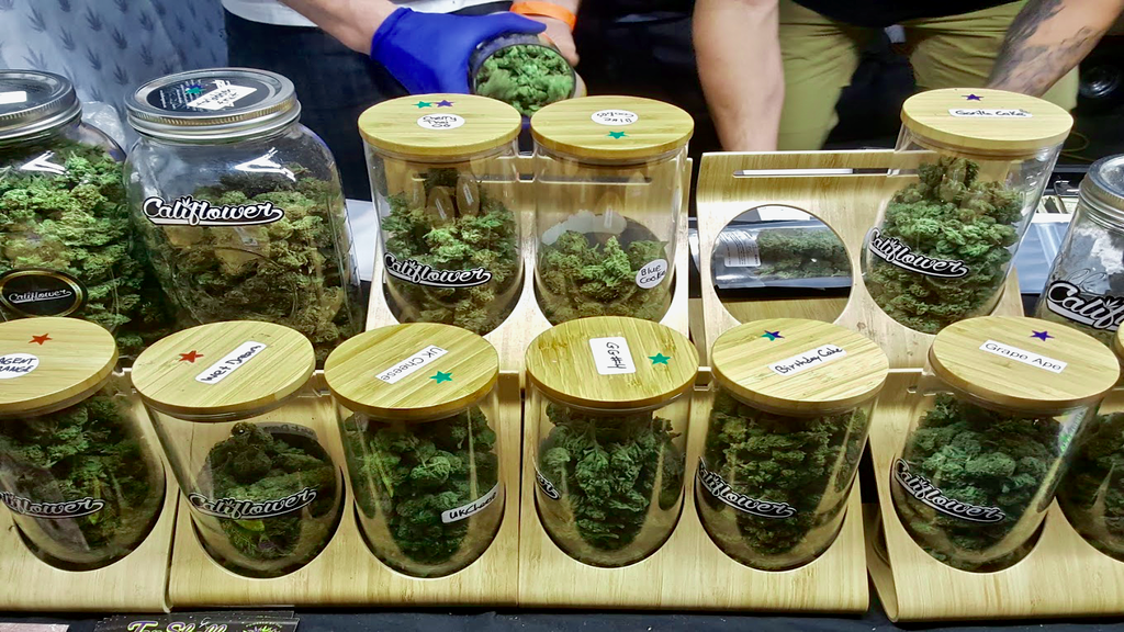 A Quick Beginner's Guide to Dispensaries in LA