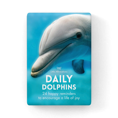 DDD - Daily Dolphins - 24 card pack + stand