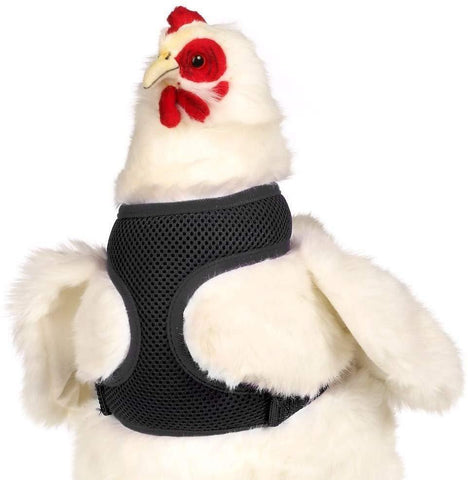 Valhoma Chicken Harness - Black Small, Valhoma