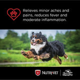 Nutri-Vet K9 Aspirin Liver Chewables Medium/Large Dog 75ct, Nutri-Vet