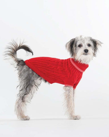 lookin' good! by FASHION PET Classic Cable Sweater Red in XXX-Small