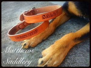 Custom Name Leather Dog Collars