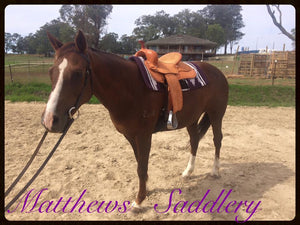 Karima's horse Jackie trying out a Matthews western saddle