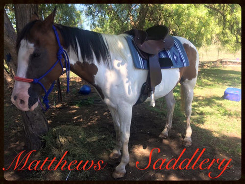 Kirk's mare Sassy trying out a Matthews Fender saddle