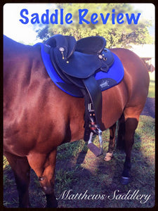 Sharon's horse Doc trying out his Matthews fender saddle