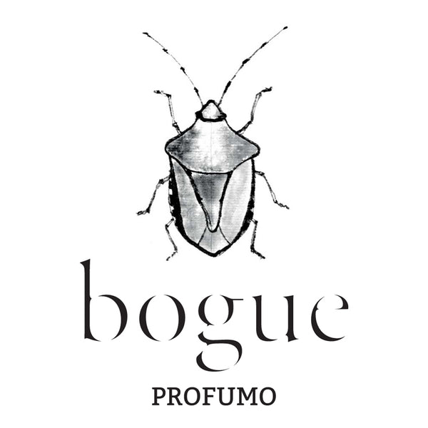 CATCHING THE BUG OF BOGUE PROFUMO