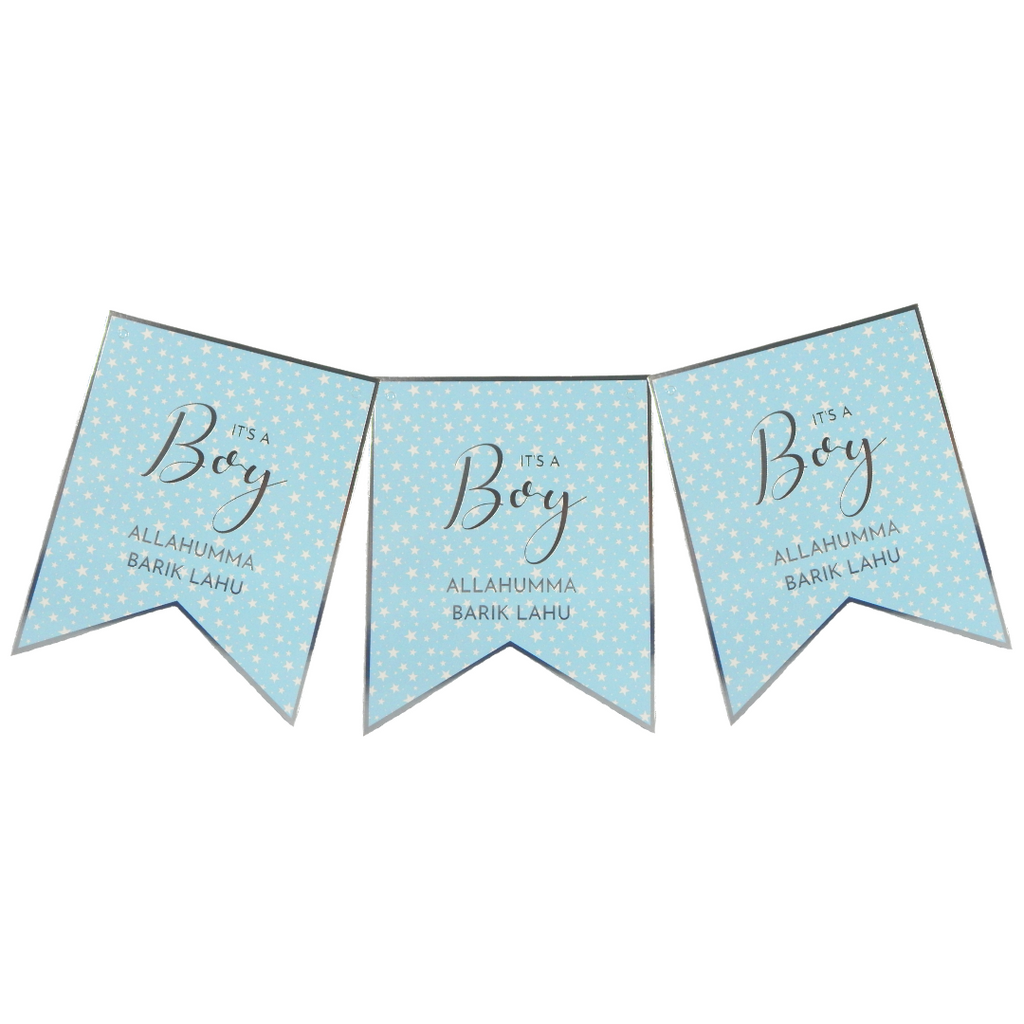 Baby Boy Banner - Peacock Supplies