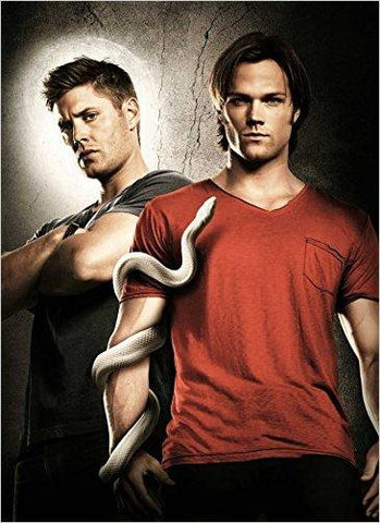 Sam and Dean with a snake.