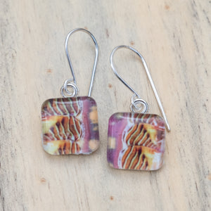 Colorful Chiton Square Photo Earrings