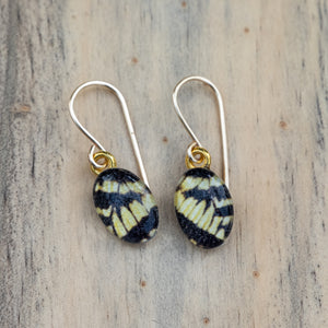 Yellow and Black Swallowtail Butterfly Wings Photo Earrings