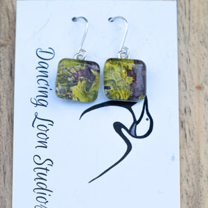 Green Hornwort Leaves Against Brown Bark Photo Earrings