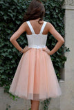 promnova.com supply Cheap Homecoming Dress Sexy Straps Tulle Short Pink Party Dress, SH261
