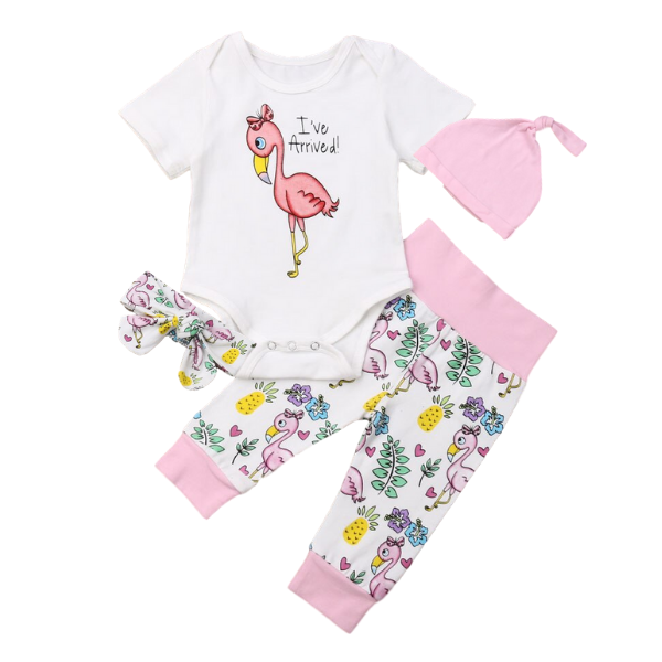 Emily's Flamingo Set