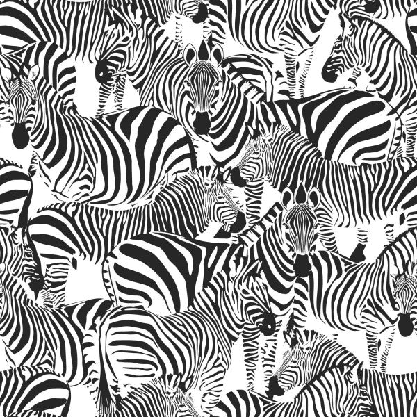 PARADISE - Zebras black and white EH139155