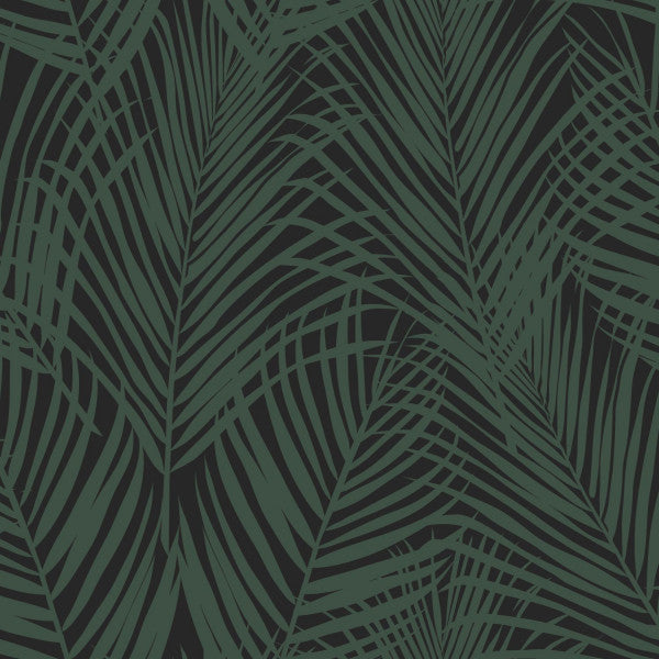 PARADISE - Palm Leafs EH139157