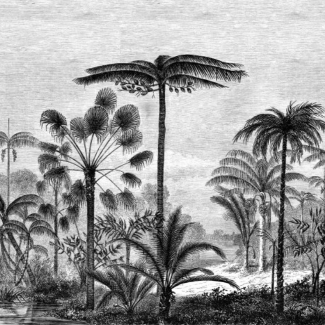 Mural/Painel PARADISE -  Palm Trees EH158952