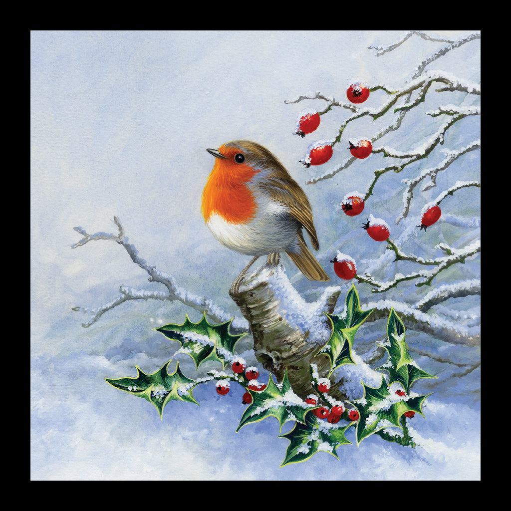 "Robin amongst the Holly<p style=""color_gold"">LUXURY RANGE"