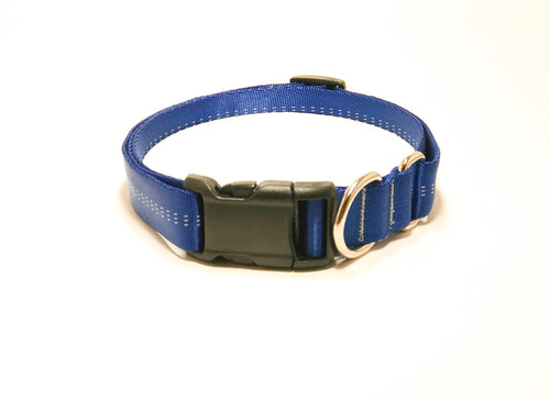 Slip Collar // Large Dog // Royal Blue