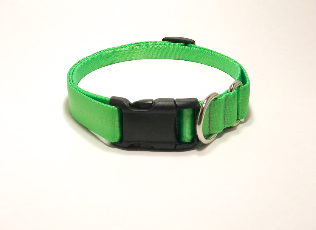 Slip Collar // Medium Dog // Spring Green