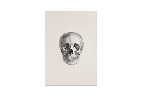 Memento Mori Skull (Single) Stationary Letter