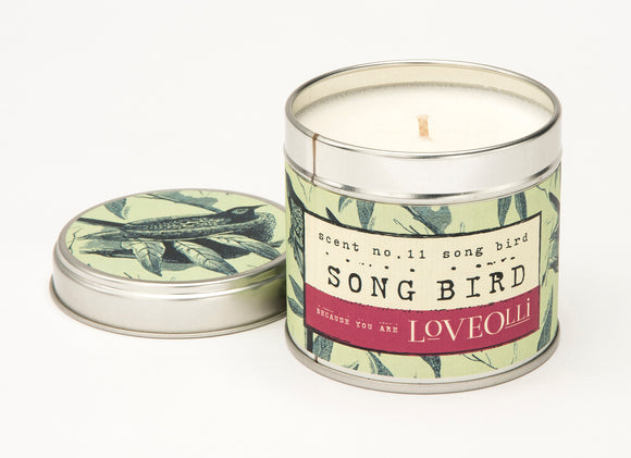 gifteasyonline - LoveOlli Scented Tin Candle Song Bird - Ulster Weavers - Candle